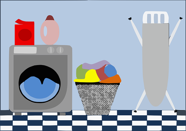 how to remove mold from colored clothes